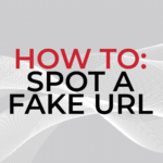 Blog: How to Spot a Fake URL